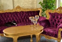 nabytok 1 (18)-3+1+1+stolik-2650 EUR (mozna dohoda)